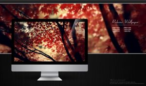 Red Wine HD Wallpaper by solutionall