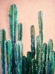 Cactuses by favouriteflavor