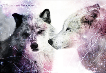 Alone with the wolves. by emma59210