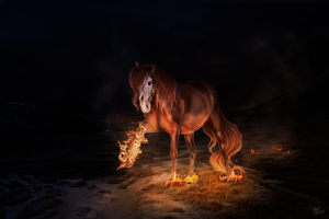 Comm    I See Fire by Interrobang-designs