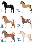 Design Sale - Open 2/6 *Price Reduced! by Happy-Horse-Stable