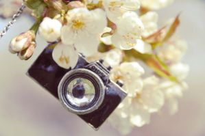 camera necklace by Holunder