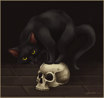 The Cats of Ulthar by Cayleth
