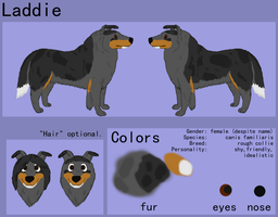 updated Laddie ref by Colliequest