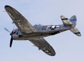 Republic P-47D Thunderbolt Flyby 3 by shelbs2