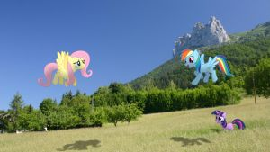 Ponies in Alpine meadow (MLP in real life) by StormXF3