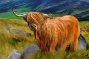 Highland Cow roaming the Highlands by Liagon