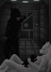 A Touch of Conflict by IndiWolfOnline