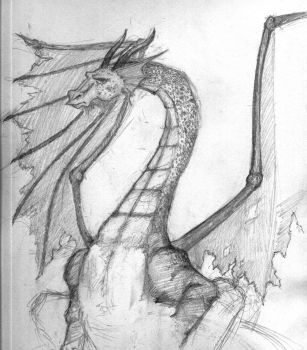 Dragon with no legs by sauch
