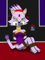 Commission of Blaze the cat by firagamon