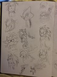 A butt-load of Sonic characters 2 by Flameprincess04