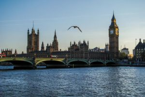 Westminster by Fabiuss