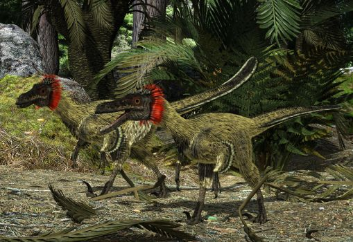 Buitreraptor:Candeleros Formation S. America 94 Ma by PrehistoricArt