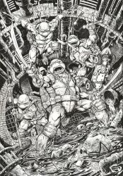 Teenage Mutant Ninja Turtles for Nickelodeon