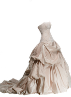 Ivory Wedding Dress PNG by Vixen1978