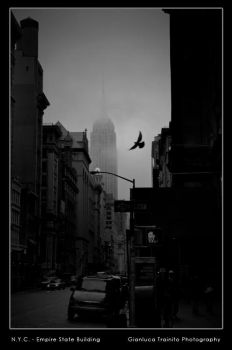 N.Y.C. - Empire State Building by gltvisualart