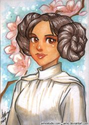 PSC - Leia Organa by aimo