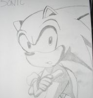 Sonic the Hedgehog by SonicHearts