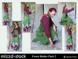 Forest Raider Pack 2 by mizzd-stock