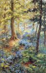 Bluebell Woods by Yesterdays-Paper