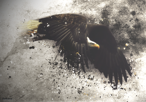 Eagle disintegrating by llDarkness