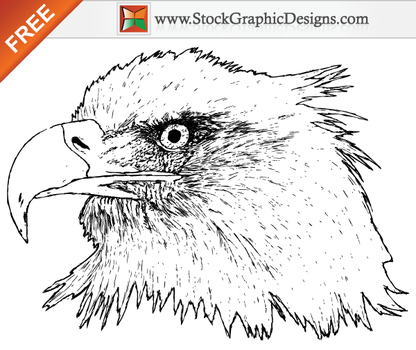 Free Hand Drawn Eagle Brush by Stockgraphicdesigns