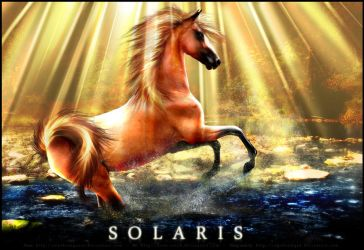 Solaris by dream-seer