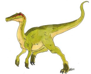 :PaleoProject: Compsognathus by Clytemnon