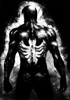 Spider from the darkness by Botonet