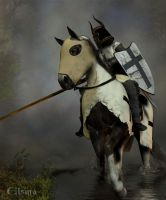The Teutonic Knight by Elsina