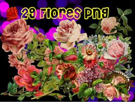 Flores pack png by CamiiSepuu