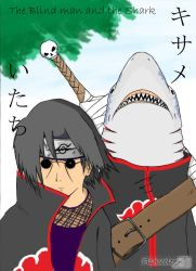 Itachi and Kisame by Fishcooler