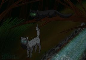 Hollyleaf and Ashfur by Kokolana