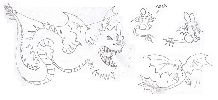 Dragon Sketches by Mirka-Dragon