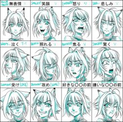 Pixiv Expression Practice Meme for Rua by sonialeong