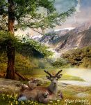 Deer and friends by lakeglenmiss