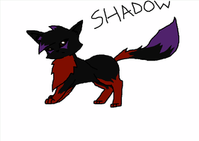 Shadow the cat by CongotehJackal