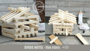 birds hotel by Marsulu