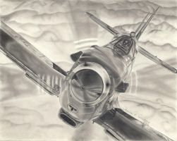 Spitfire Airplane by Molock67