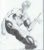 Here Comes The Spider-Man by RadPencils