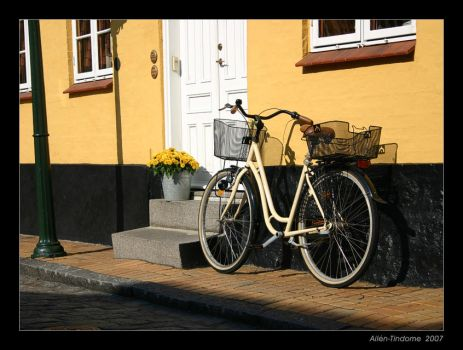 Bike and the flowers by Tindome
