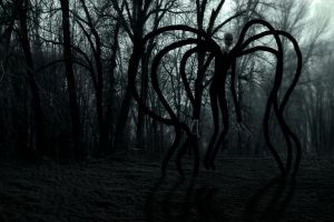 Slenderman Wallpaper by BlankeyJohanna
