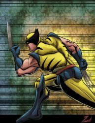 Wolverine: colored line-art by SpecialOpsZ64