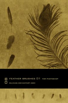 Feather Brushes PS - 01 by silinias