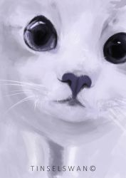 kitty WIP by tinselswan