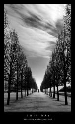 This way by Neverends