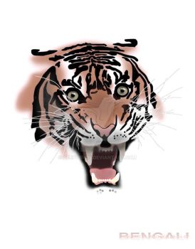 Tiger by deepvision