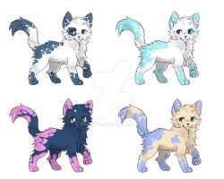 CAT BREEDABLE RESULTS! #3 CLOSED by puppyC