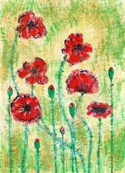 Poppies by Lucy-art