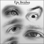 8 Eye Brushes by DoaC-Res